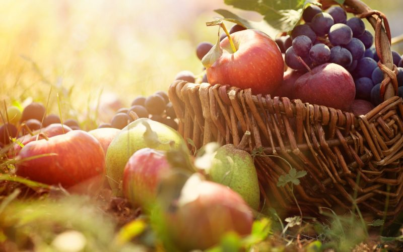 Harvest Celebrations 2017