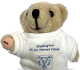 Hello, I'm Shellingford Bear!